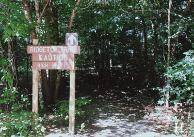 hiking trails in tennessee