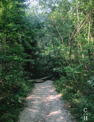 hiking trails cookeville tn