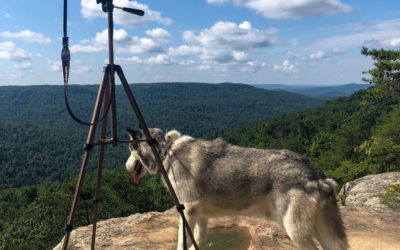 Scenic Places & Lookout Points in Cookeville & surrounding area
